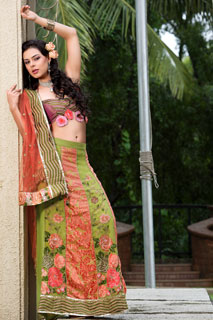Vivacious Lemon Green Peach Brasso  Net Lehenga